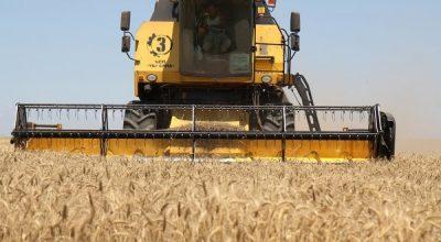 WSJ: Россия увеличила экспорт сельхозпродукции, загнав США в угол