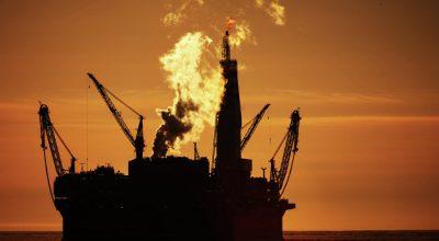 Российские ученые выяснили, как с помощью морских червей искать нефть