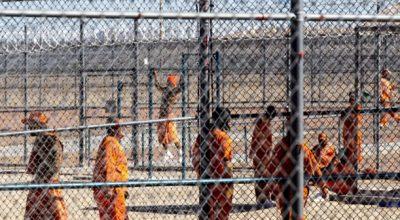 Дональд Трамп успешно развивает тюремный бизнес