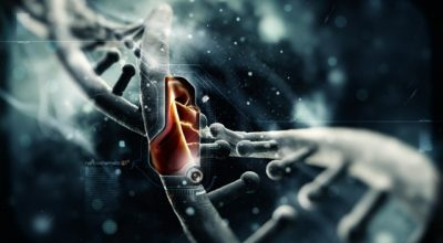 Нанотехнологии в России: что нас ждет через 10 лет?