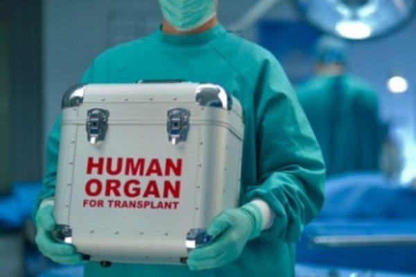 Черная транспланталогия: Европа ждет украинцев. По частям