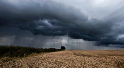 Ущерб аграриев от холодных лета и весны - 2,6 млрд