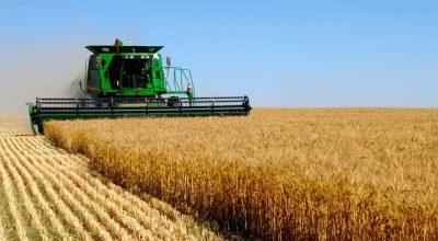 Аграрная «сверхдержава» наращивает поставки сельхозпродукции из России