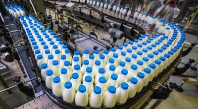 Россельхознадзор, «Данон» и «ВБД» могут оставить россиян без молока в Новом году
