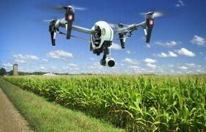 Аграрная революция: роботы собирают урожай, дроны пасут овец