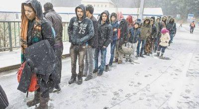 Беженцы с Ближнего Востока всё чаще едут в Россию