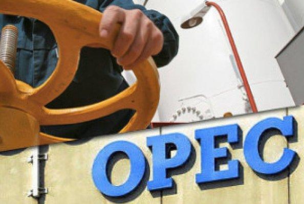 ОПЕК увеличила добычу и посочувствовала мировой экономике