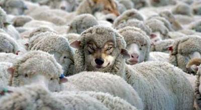 Как натовский волчище пытается прикрыться овечьей шкурой