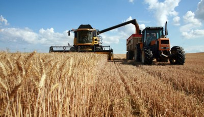 В Госдуме намерены вернуть колхозы
