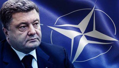 Украинская демократия: Порошенко планирует «управляемый референдум» по НАТО