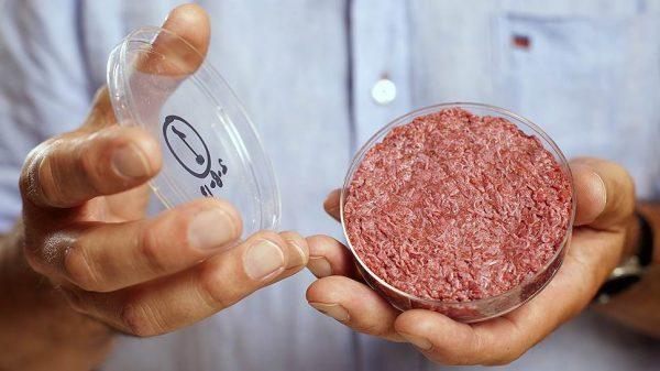 Пять биотехнологий, к которым мы не готовы