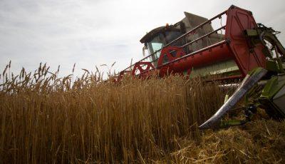 Турция запретила сельскохозяйственный импорт из России