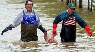 Да бросьте вы эту свинью - всё равно не ваша