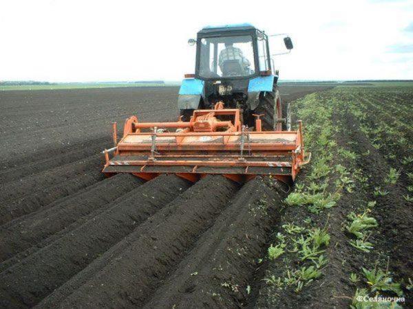 Россия, спаси! – фермеры Херсонской области написали письмо в Крым