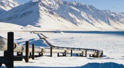 Трамп взял на прицел нефть в заповедной Аляске