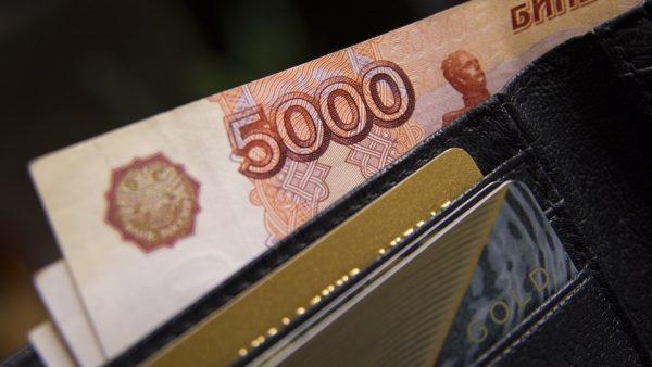Прогноз для кошелька. Как изменятся доходы и расходы россиян в 2018 году