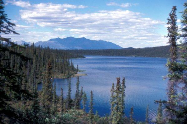The Hill: Земли Аляски выставили на продажу?