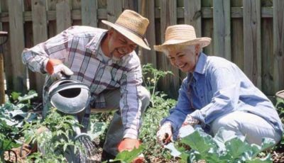 Правда ли, что пенсионерам больше не нужно платить земельный налог?